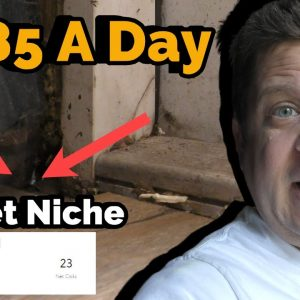 Scary Pay Per Call Niche Revealed ($485 A Day?) this was in my office!