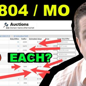 Find Profitable Niches With Godaddy Auctions And... ?